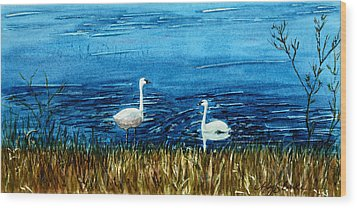 Marion Lake Swans Wood Print