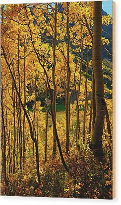 Maroon Lake Gold Wood Print by Jeremy Rhoades