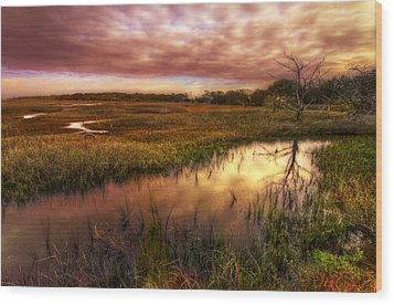 Marsh At Dawn Wood Print by Debra and Dave Vanderlaan