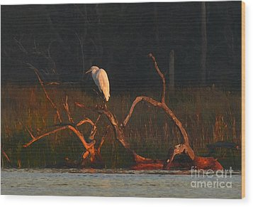 Wood Print featuring the digital art Marsh Bird Sunrise by Deborah Smith