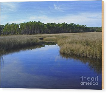 Marsh Water Creek Wood Print