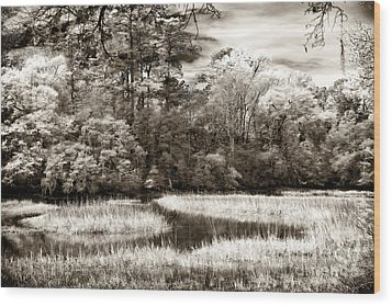 Marshes Wood Print by John Rizzuto