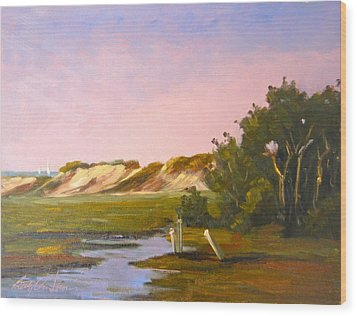 Marshlands Plymouth Landing Wood Print by Betty Ann Morris