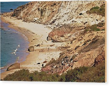 Wood Print featuring the photograph Marthas Vineyard Gay Head Cliffs  Photo Art by Constantine Gregory