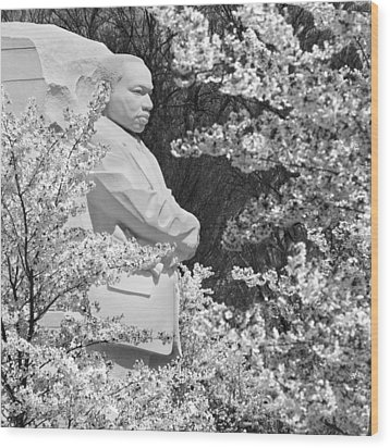 Martin Luther King Memorial Through The Blossoms Wood Print by Mike McGlothlen