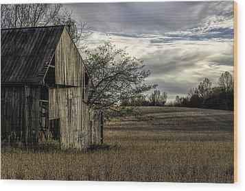 Maryland Barns Wood Print