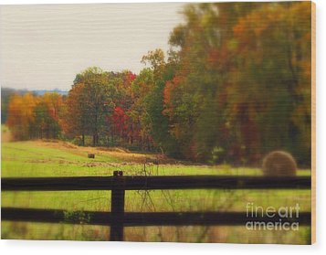 Maryland Countryside Wood Print by Patti Whitten