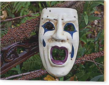 Mask And Ladybugs Wood Print by Garry Gay