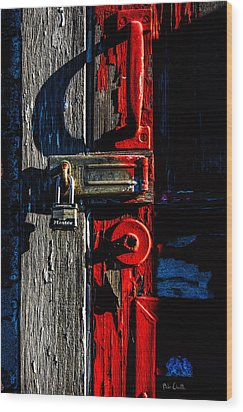 Master Of The Old Red Barn Wood Print by Bob Orsillo