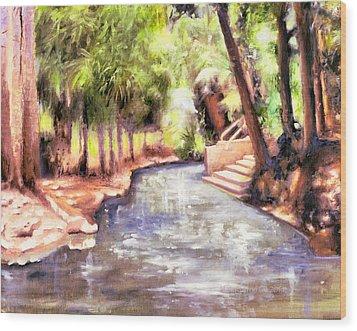 Mataranka Hot Springs Wood Print
