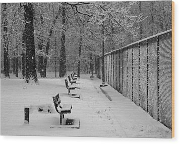 Wood Print featuring the photograph Match Called For Snow by Andy Lawless