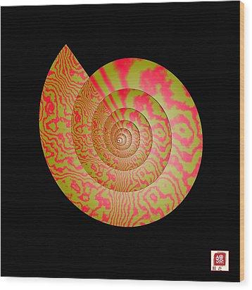 Math Conch Wood Print by GuoJun Pan