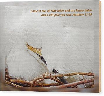 Matthew 11 28 Wood Print by Dawn Currie