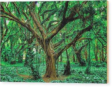 Maui Tree Wood Print