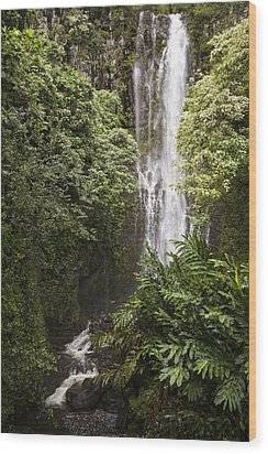 Maui Waterfall Wood Print