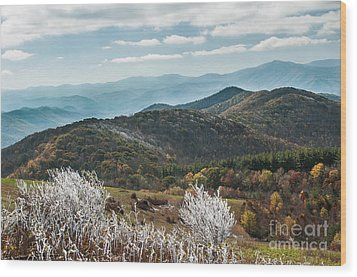 Wood Print featuring the photograph Max Patch In Appalachian Mountains by Debbie Green