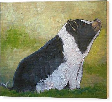 Max The Pig Wood Print