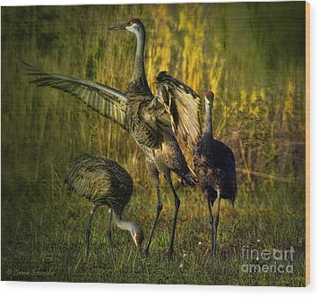 May I Have This Dance Wood Print by Lianne Schneider