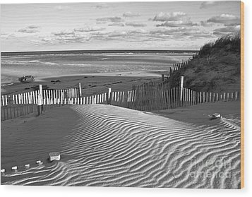 Mayflower Beach Black And White Wood Print