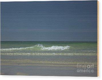 Mayflower Beach On Cape Cod Wood Print