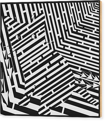 Maze Of Snarly The Cat Wood Print by Yonatan Frimer Maze Artist