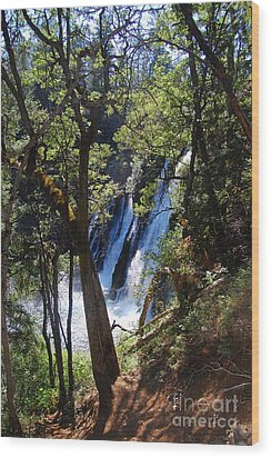 Wood Print featuring the photograph Mcarthur-burney Falls Side View by Debra Thompson