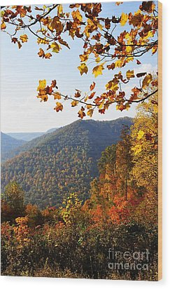 Mcguire Mountain Overlook Wood Print by Thomas R Fletcher