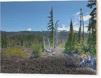 Mckenzie Pass Scenic View Wood Print by John Kelly