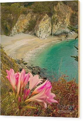 Mcway Falls-3am Adventure Wood Print by David Millenheft