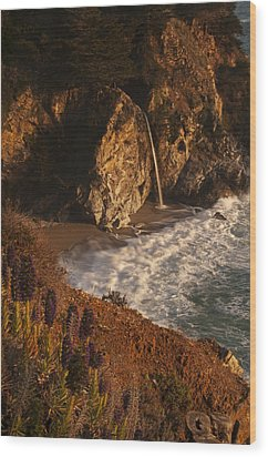Wood Print featuring the photograph Mcway Falls 4 by Lee Kirchhevel