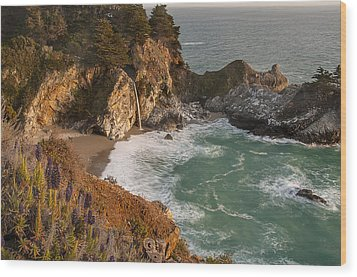 Wood Print featuring the photograph Mcway Falls 5 by Lee Kirchhevel