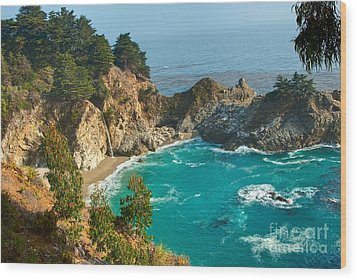 Mcway Falls Along The Big Sur Coast. Wood Print by Jamie Pham