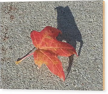 Wood Print featuring the photograph Me And My Shadow by Caryl J Bohn