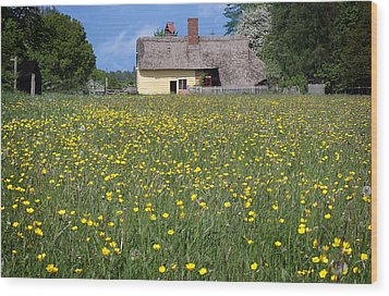 Meadow Cottage Wood Print by Stephen Norris