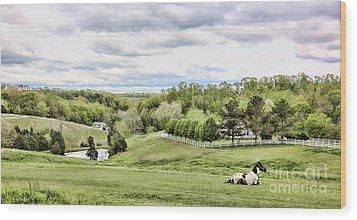 Meadow II Wood Print by Chuck Kuhn