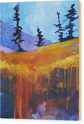 Meadow Mountain Wood Print by Nancy Merkle