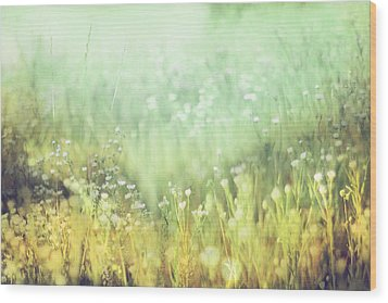 Meadowland Wood Print by Amy Tyler