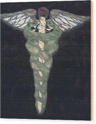 Medical Caduceus  Wood Print by Lisa Collinsworth