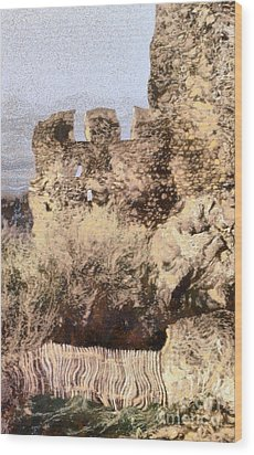 Medieval Castle Of Holloko Hungary Wood Print by Odon Czintos