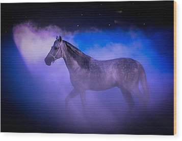 Medieval Times Tournament Horse Wood Print by Gene Sherrill