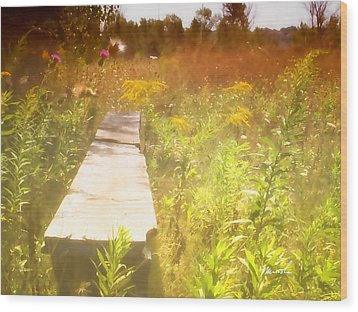 Meditation In Sunlight 1 Wood Print by The Art of Marsha Charlebois