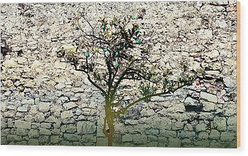 Mediterranean Garden With An Old Wall Wood Print by Arsenije Jovanovic