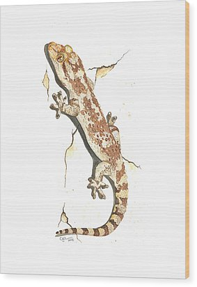 Mediterranean House Gecko Wood Print by Cindy Hitchcock