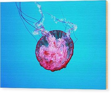 Medusa Wood Print by Valentino Visentini