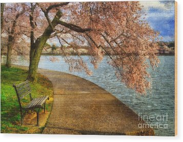 Meet Me At Our Bench Wood Print by Lois Bryan