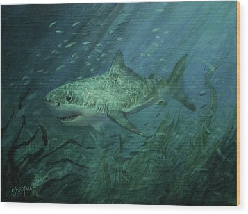 Megadolon Shark Wood Print by Tom Shropshire