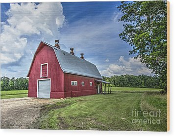 Megan's Barn Wood Print by D Wallace