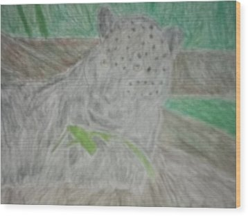 Melanistic Jaguar Drawing On Paper Wood Print by William Sahir House