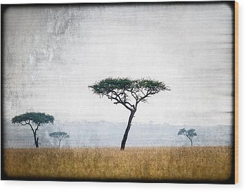 Mellow Mara Acacias Wood Print