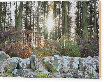 Melting The Mist Wood Print by David Birchall